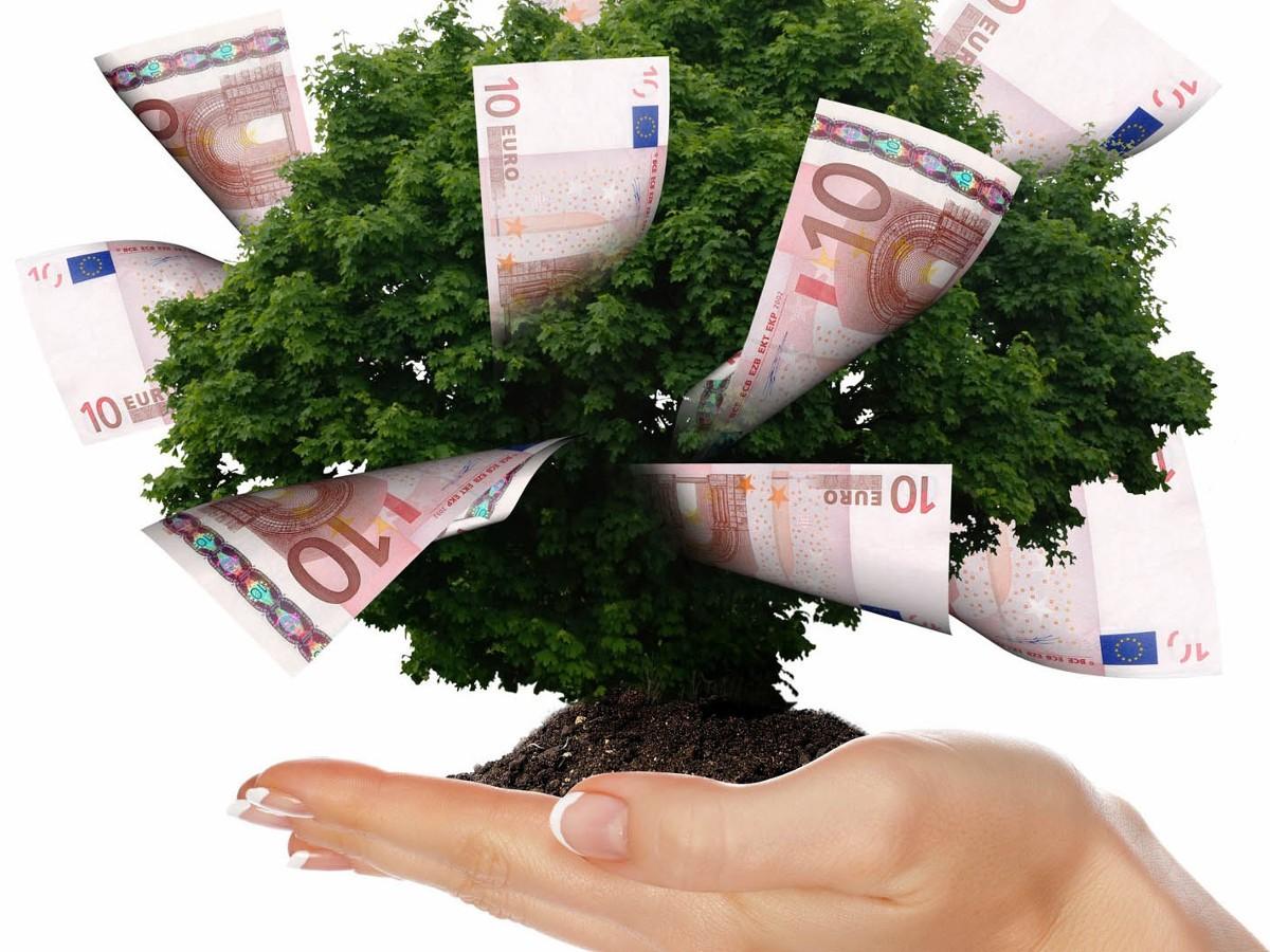 Basilicata: Bando START AND GO. Contributo A Fondo Perduto Fino Al 60% Per La Creazione Di Nuove Imprese.